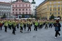 Brno10